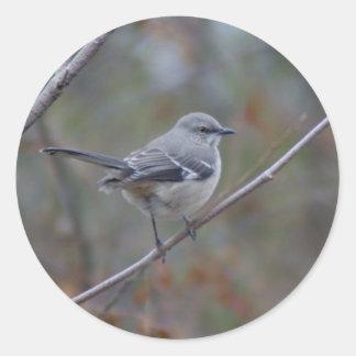 Mockingbird Ornithology Classic Round Sticker