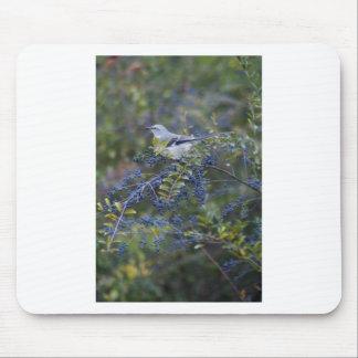 Mockingbird Ornithology Mouse Mat