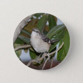 Mockingbutton - Northern Mockingbird on Magnolia 6 Cm Round Badge