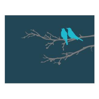 mod birds postcard