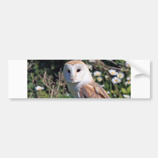 Mod Chic Classy Destiny Owl Bumper Stickers