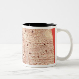 Model of a sheep's liver Two-Tone coffee mug