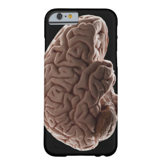 Model of human brain, studio shot barely there iPhone 6 case