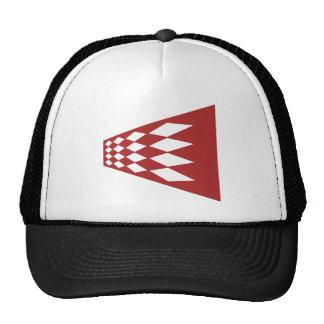 Modern Argyle Art Mesh Hat