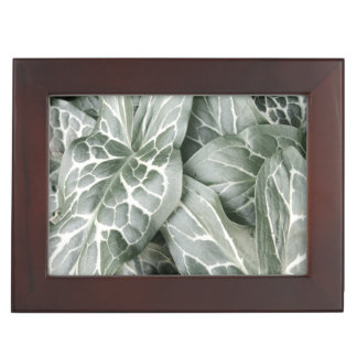 Modern Black and White Leaf Design Keepsake Box