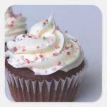 Modern Chocolate Cupcakes Sprinkle Frosting