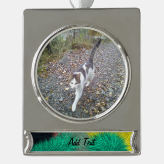 Modern colorful furry art silver plated banner ornament