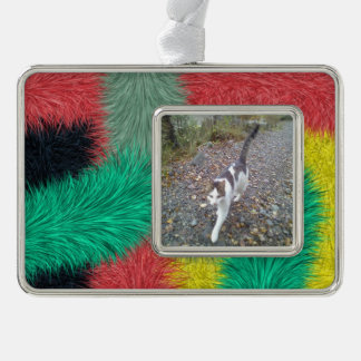Modern colorful furry art silver plated framed ornament