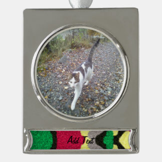 Modern colorful pattern silver plated banner ornament