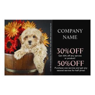 Modern cute animals pet service beauty salon custom flyer