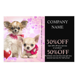 Modern cute animals pet service beauty salon flyers