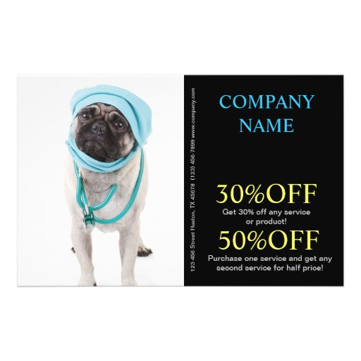 Modern cute animals pet service veterinary flyers