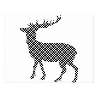Modern deer hunter postcard