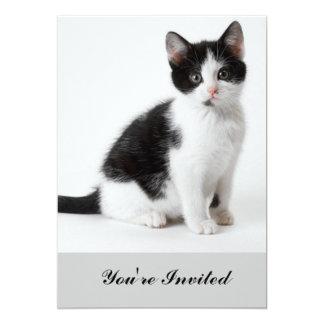 Modern funny cute cat lover 13 cm x 18 cm invitation card