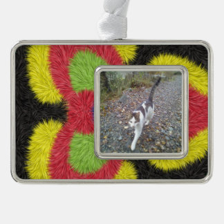 Modern furry brush pattern silver plated framed ornament