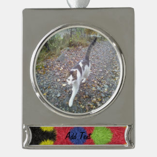 Modern furry brush pattern silver plated banner ornament