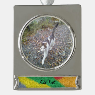 Modern multicolored furry pattern silver plated banner ornament