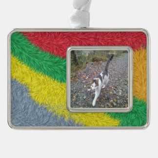 Modern multicolored furry pattern silver plated framed ornament