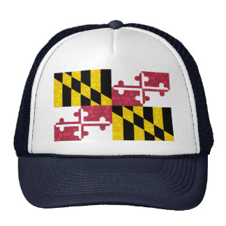 Modern Pattern Marylander Flag Mesh Hat