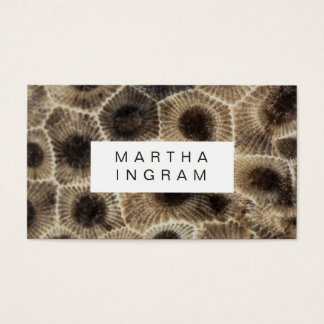 Modern Petoskey Stone Abstract Stone Design Business Card