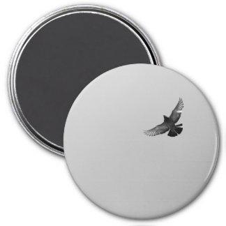 Modern simple black white flying bird pigeon photo 7.5 cm round magnet
