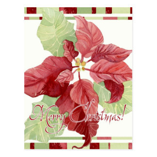 Modern Striped Poinsettia Christmas Floral Holiday Post Card