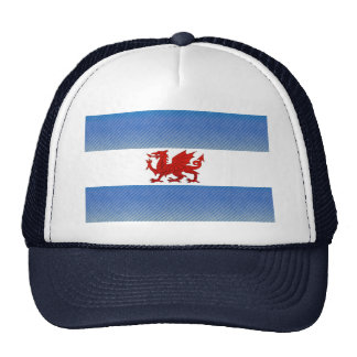 Modern Stripped Patagonian flag Cap