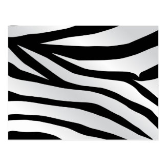 Modern Trendy Zebra Stripes Pattern Post Card