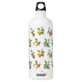 modern vintage botanical fruits water bottle