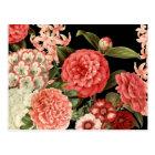 modern vintage botanical pink flowers postcard