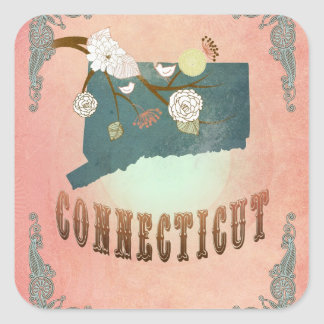 Modern Vintage Connecticut State Map- Pastel Peach Stickers