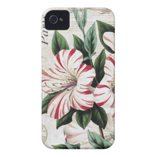 modern vintage french amarylis iPhone 4 covers