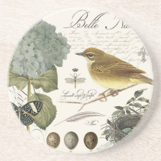 modern vintage French bird and nest Coaster