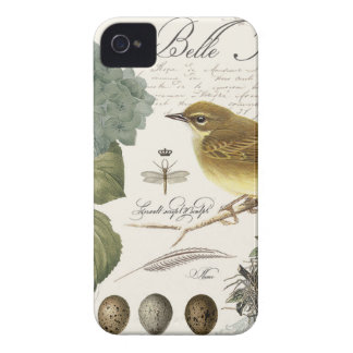 modern vintage French bird and nest iPhone 4 Cover