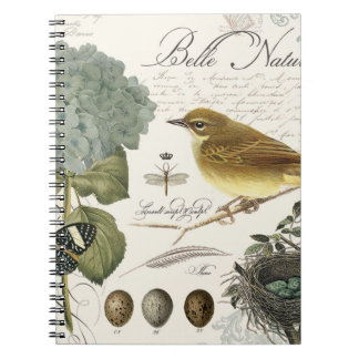 modern vintage French bird and nest Notebooks