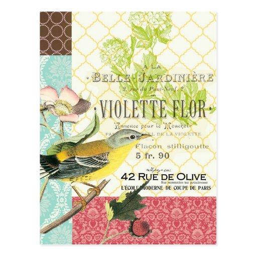 Modern vintage french bird postcard