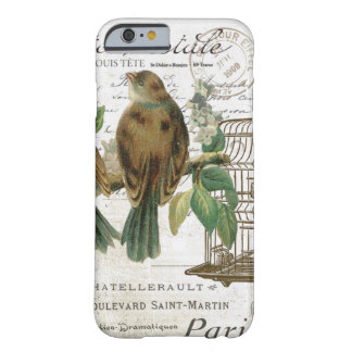 Modern Vintage French birds and birdcage Barely There iPhone 6 Case