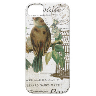 Modern Vintage French birds and birdcage Case For The iPhone 5