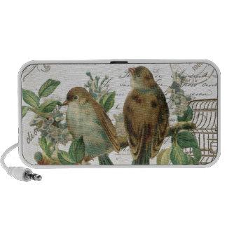 Modern Vintage French birds and birdcage Speaker System