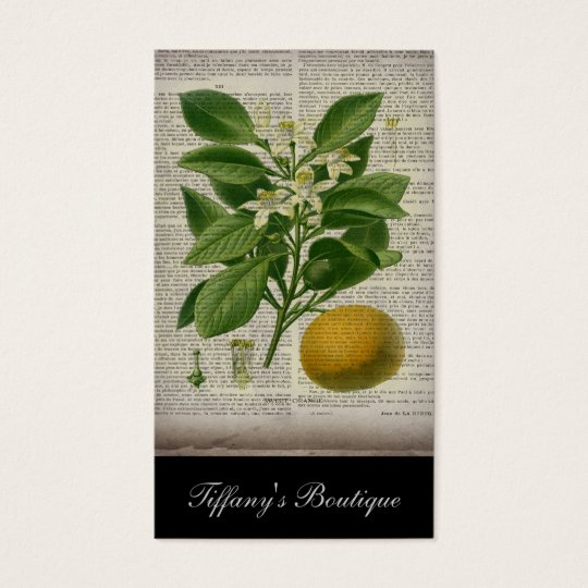 modern vintage french country botanical art orange business