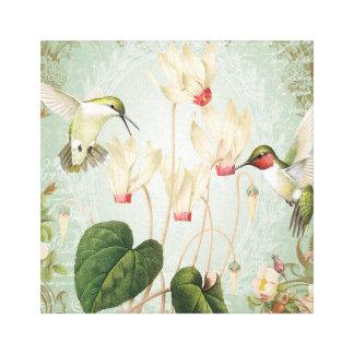 Modern Vintage French Hummingbirds Canvas Print