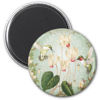 Modern Vintage French Hummingbirds Magnet