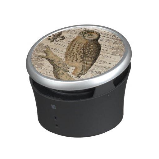 modern vintage french owl bluetooth speaker