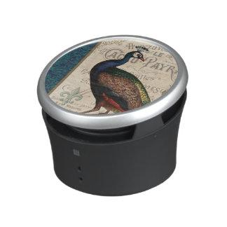 modern vintage french peacock speaker