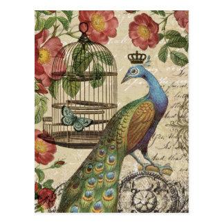 modern vintage french peacock postcard