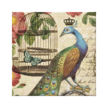 modern vintage french peacock stretched canvas prints