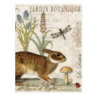 modern vintage french rabbit in the garden postcard