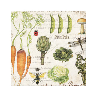 modern vintage french vegetable garden gallery wrap canvas