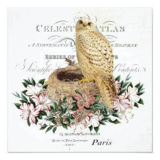 modern vintage French winter owl invitiation 13 Cm X 13 Cm Square Invitation Card