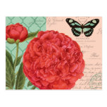 Modern vintage Peony and butterfly Postcard